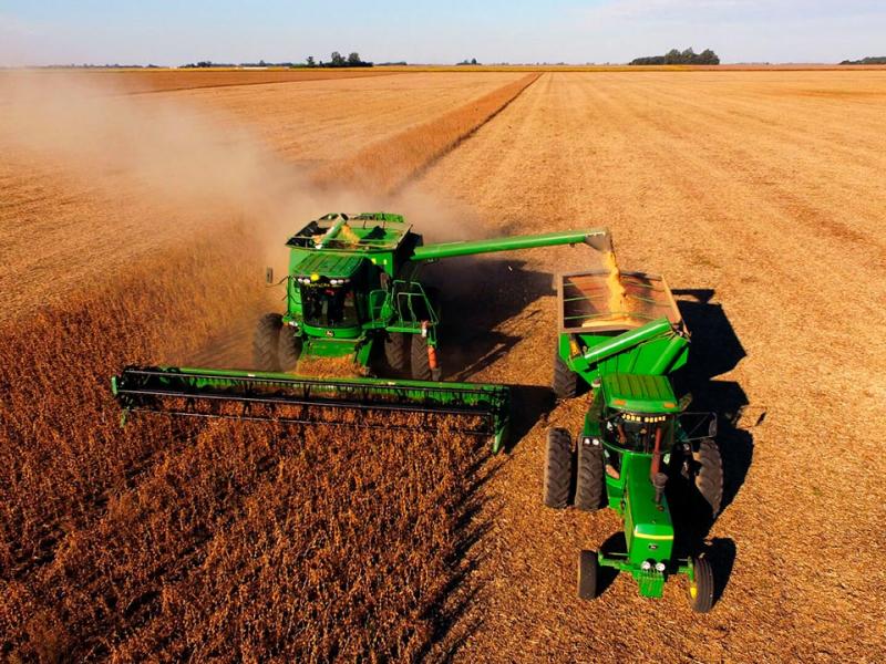 Grain insurnce